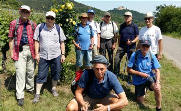Trimm Dich-Wanderung in die Pfalz Anfang Juni 2019